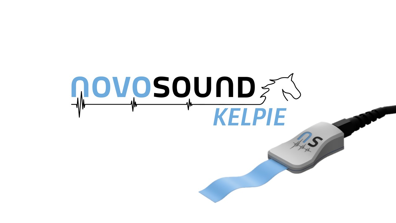 Novosound Kelpie: One tool for every inspection